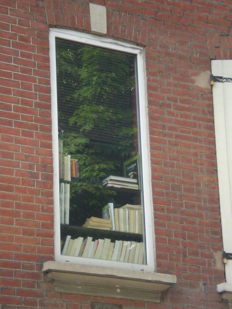 http://i42.servimg.com/u/f42/09/02/08/06/i210.jpg
