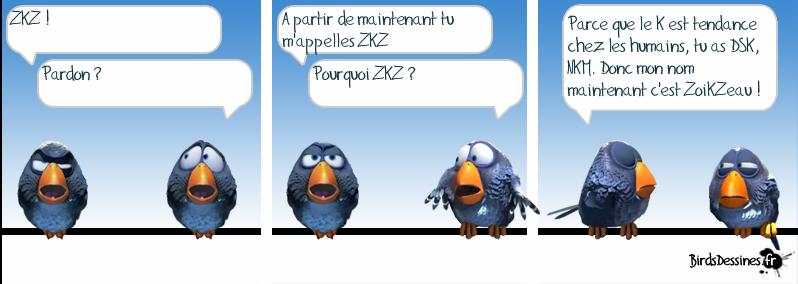 http://i42.servimg.com/u/f42/09/02/08/06/oiseau12.png