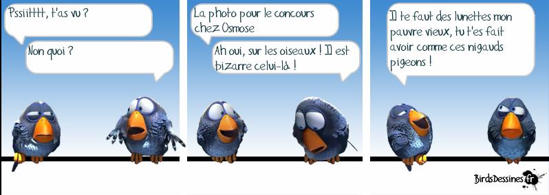 http://i42.servimg.com/u/f42/09/02/08/06/oiseau15.png