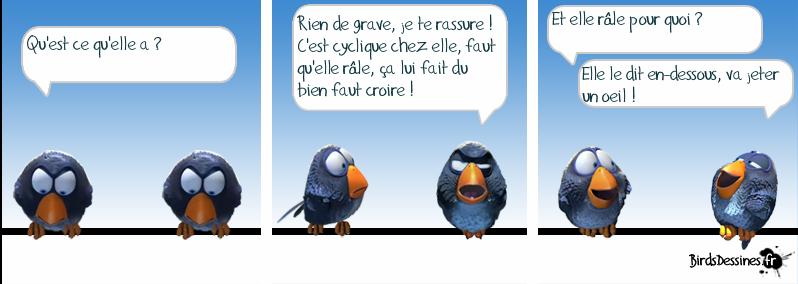 http://i42.servimg.com/u/f42/09/02/08/06/oiseau18.png