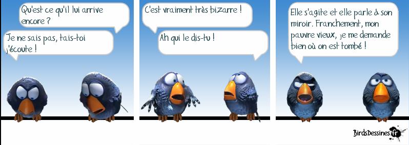 http://i42.servimg.com/u/f42/09/02/08/06/oiseau19.png
