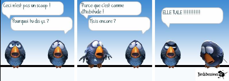 http://i42.servimg.com/u/f42/09/02/08/06/oiseau27.png