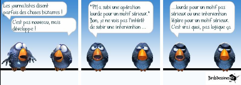 http://i42.servimg.com/u/f42/09/02/08/06/oiseau28.png