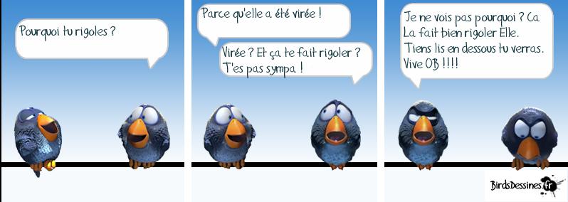 http://i42.servimg.com/u/f42/09/02/08/06/oiseau34.png