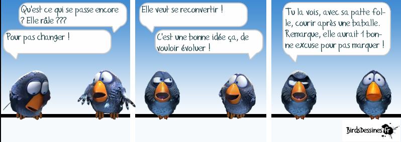 http://i42.servimg.com/u/f42/09/02/08/06/oiseau35.png