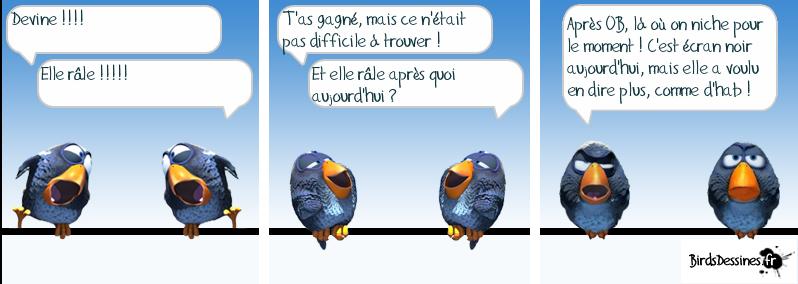 http://i42.servimg.com/u/f42/09/02/08/06/oiseau36.png