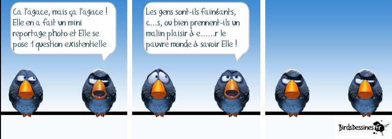 http://i42.servimg.com/u/f42/09/02/08/06/oiseau38.png