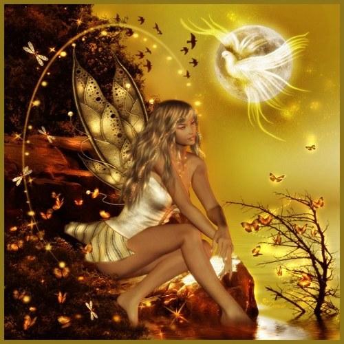 Le paradis des anges