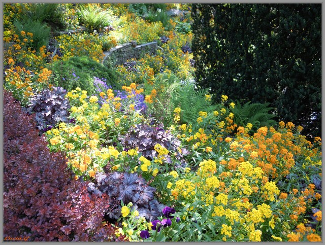 http://i42.servimg.com/u/f42/09/02/90/60/jardin11.jpg