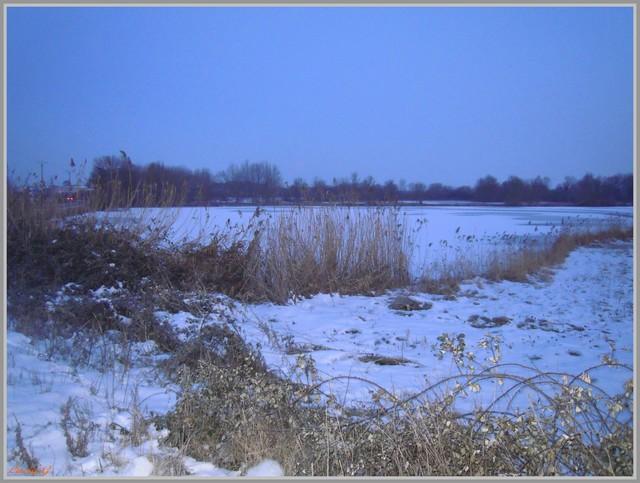 http://i42.servimg.com/u/f42/09/02/90/60/neige213.jpg