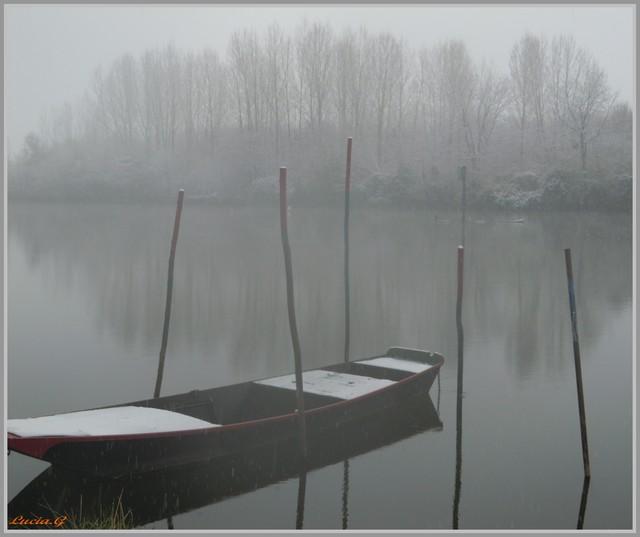 http://i42.servimg.com/u/f42/09/02/90/60/neige_13.jpg