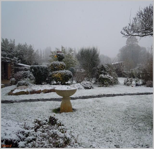http://i42.servimg.com/u/f42/09/02/90/60/neige_17.jpg