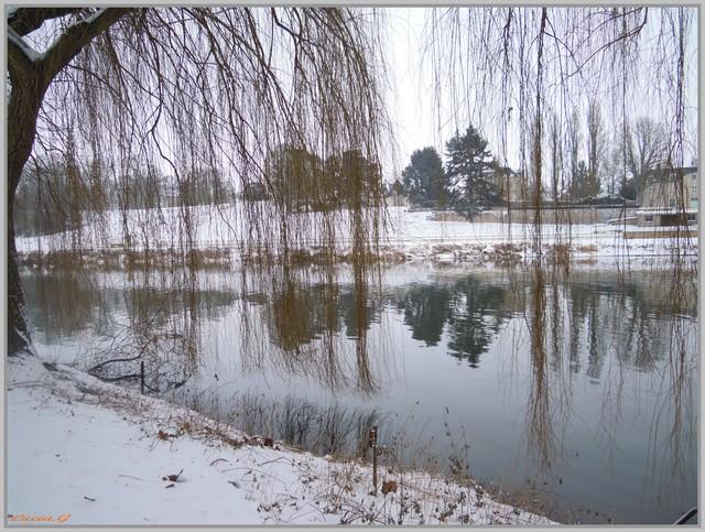http://i42.servimg.com/u/f42/09/02/90/60/neige_27.jpg