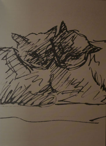 Steinlen,théophile-alexandre steinlen,bmc, le peintre bmc,art maniac, picasso,chat,chats,chats de steinlen,foujita,léonor fini,bonnard,manet,chardin,