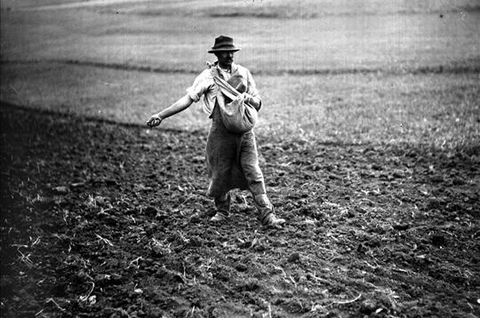 Quand la plupart des fran ais travaillaient aux champs - Semer a la volee ...