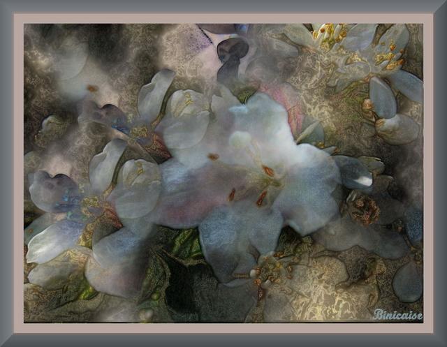Fleurs intemporelles. dans Creations 640_fl14