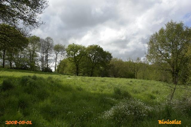 Un après midi à la campagne. dans Bretagne _640_p12