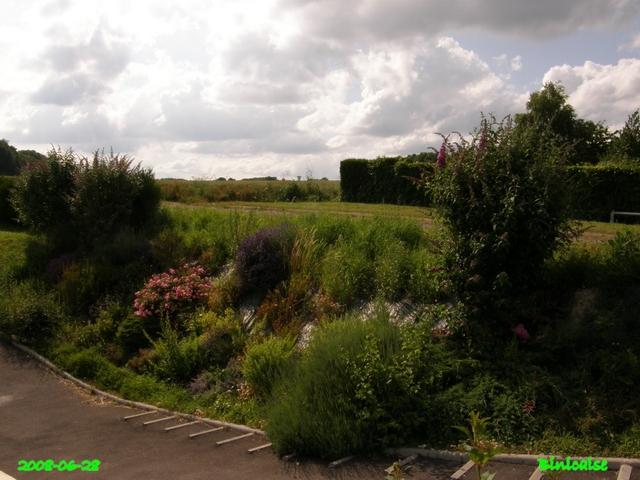jardin25 dans Photos