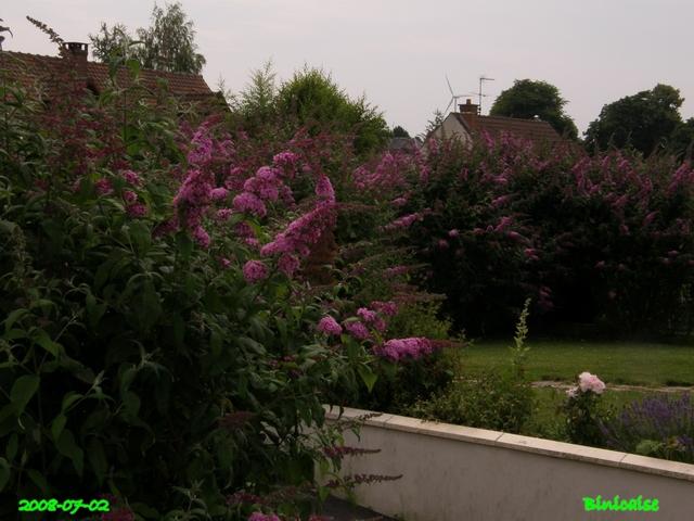jardin29 dans Photos
