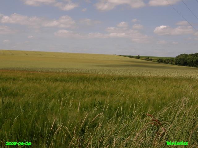Plaines picardes.... dans Paysages urbains et autres plaine12