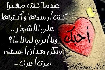 مجموعة من أجمل كلمات الحب