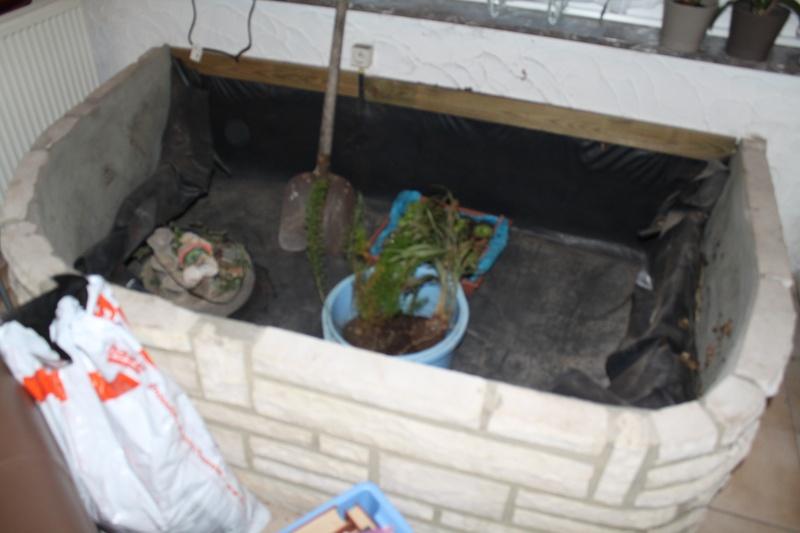 Projet de bassin for Pompe bassin externe