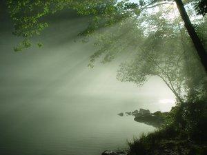 Sunlit Springs