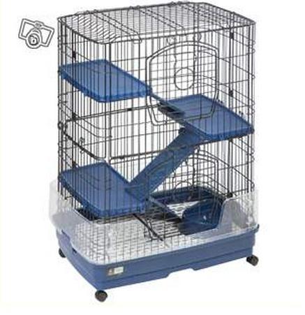 Fabrication d 39 une cage pour 2 rats - Cage a rat pas cher ...