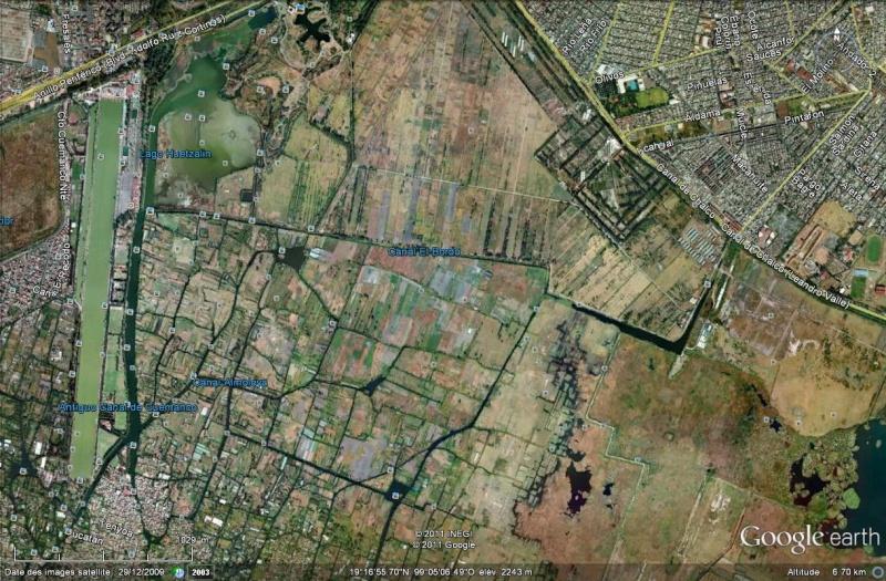 Mexique les jardins flottants de xochimilco canaux for Xochimilco jardin flottant