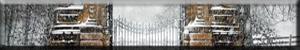 http://i42.servimg.com/u/f42/13/02/83/67/0-gril10.png