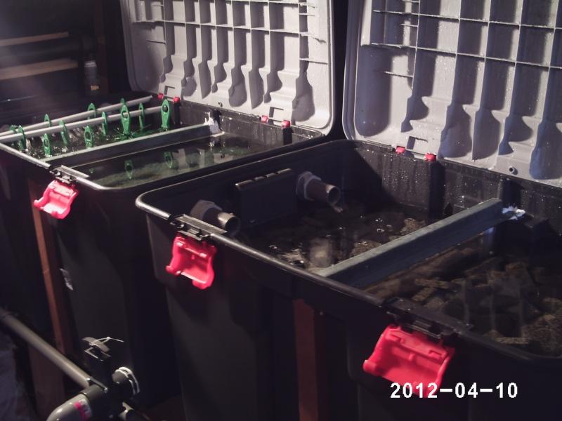 Mon filtre for Filtre bassin maison