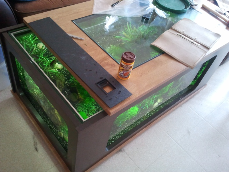 table basse avec aquarium integre. Black Bedroom Furniture Sets. Home Design Ideas