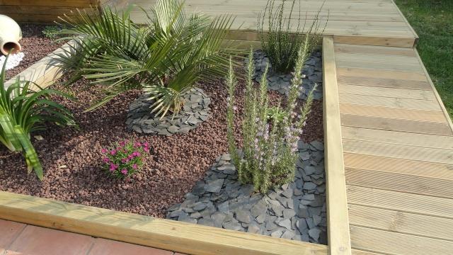 le forum des fous de palmiers projet massif exotique. Black Bedroom Furniture Sets. Home Design Ideas