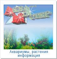 Интернет-магазин аквариумистов