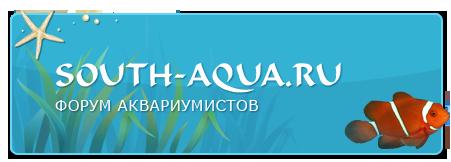 Форум аквариумистов