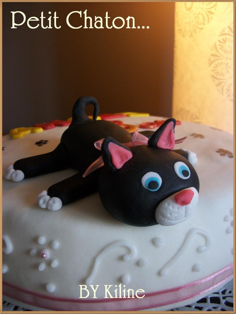 Chat page 7 - Gateau anniversaire fille 10 ans ...