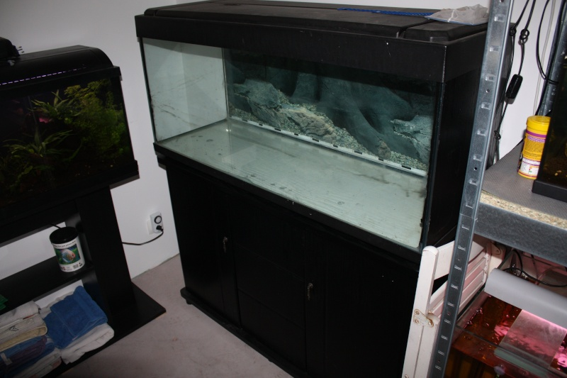 60 vend aquarium 250l meuble for Vend aquarium