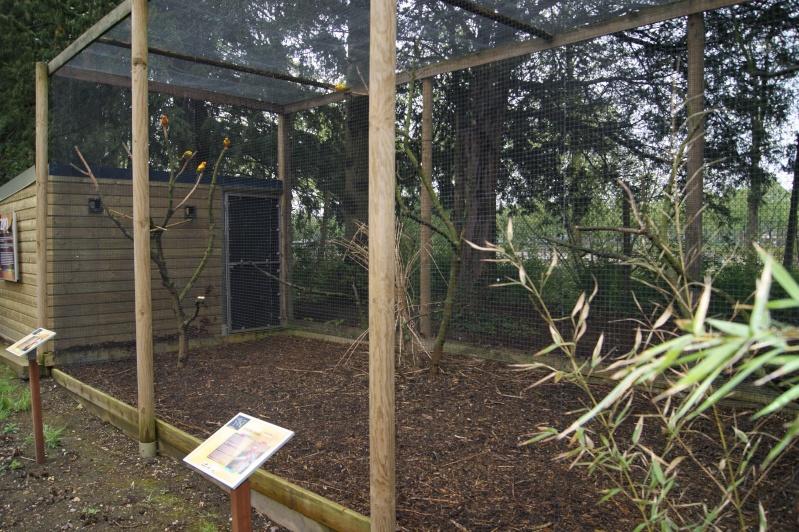 Leszoosdanslemonde afficher le sujet zoo d 39 amiens for Zoo exterieur
