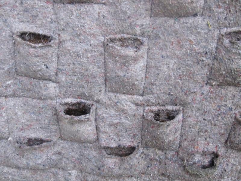 Le jardin vertical cr er un mur v g tal for Comment faire un mur vegetal