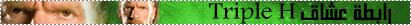 https://i42.servimg.com/u/f42/15/32/39/48/2010.png
