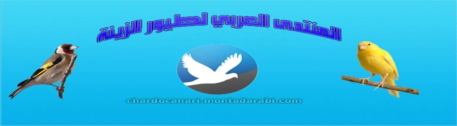 المنتدى العربي لطيور الزينة