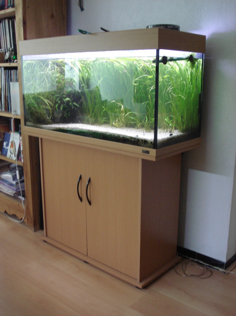 vends aquariums 100l et 200l. Black Bedroom Furniture Sets. Home Design Ideas