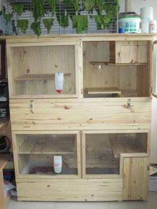 Nouveau clapier la maison kandice et gershwin for Clapier lapin fait maison