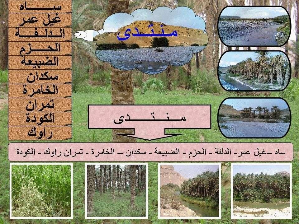 منتدى ساه غيل عمر الدلفة الحزم الضبيعة سكدان الخامره راواك الكوده تمران