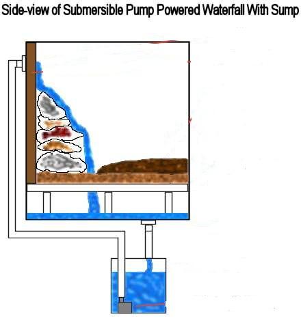 bassin d'eau pour terrarium