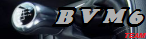 Team BVM6