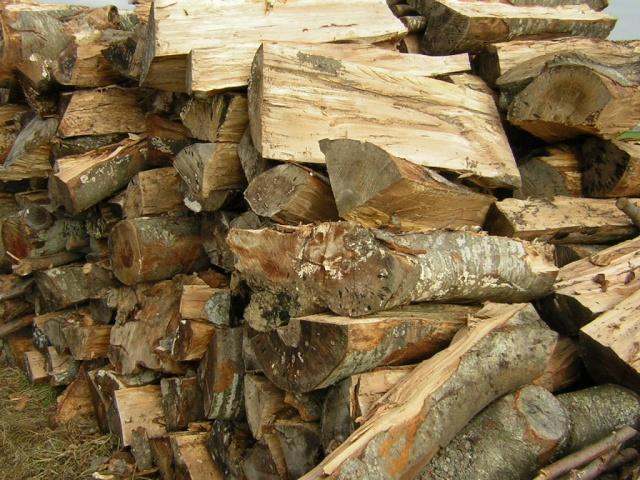 Prezzi legna da ardere pagina 8 for Legna da ardere prezzi