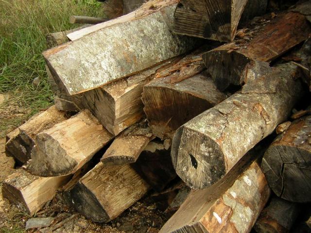 Tabella peso specifico legna da ardere prezzi legna da for Legna da ardere brianza