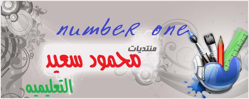 مستر محمود سعيد