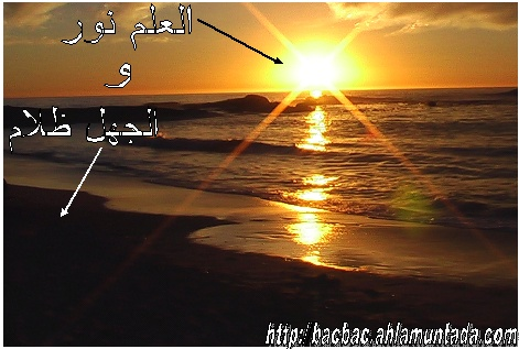 للعرب والجزائرين .........
